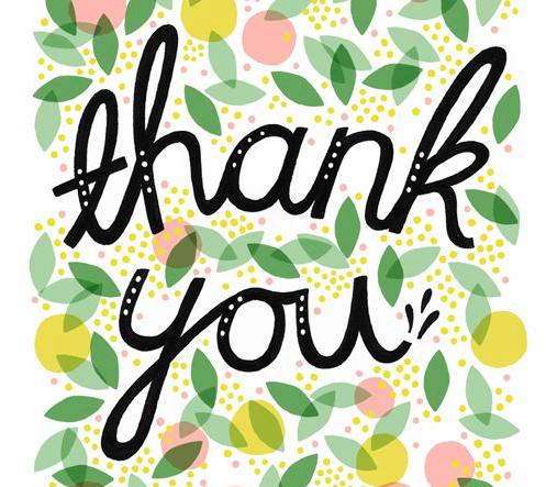 totspot-thank-you